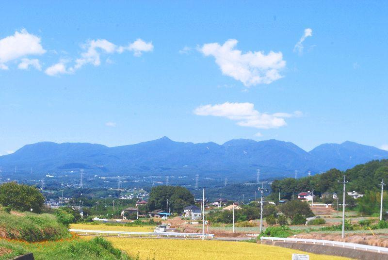 kosumosu145.jpg